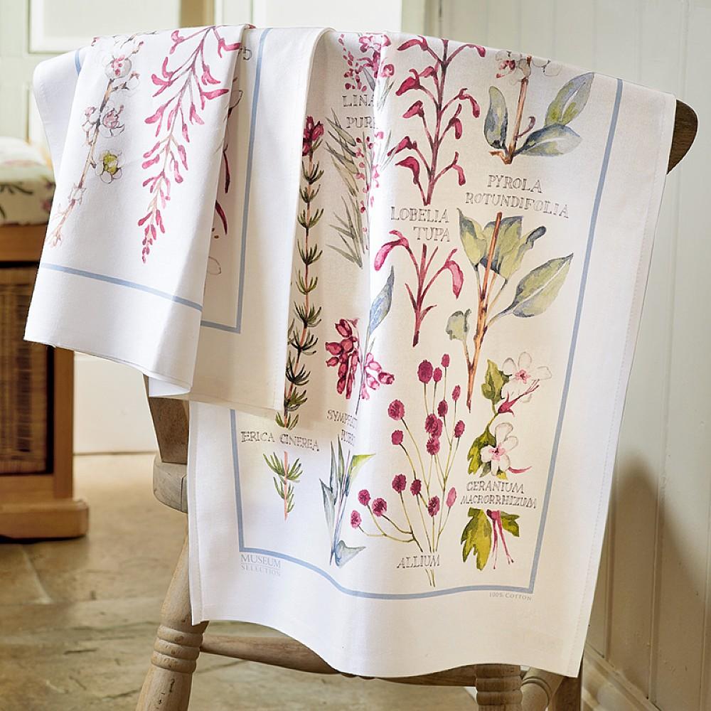 Pair of Adams Botanical Tea Towels | Kitchen | Museum Selection