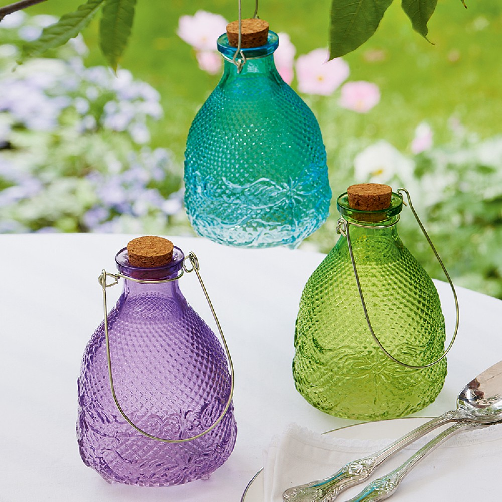 Image of 3 Hobnail Glass Wasp Traps