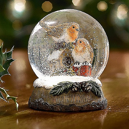 Museum Selection Robin Snow Globe
