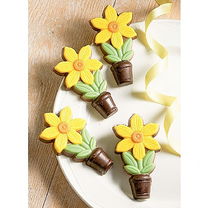 Duo of Decorated Chocolate Daffodils Packs