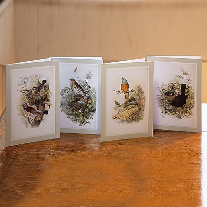 20 Gould's British Birds Cards
