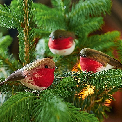 Trio of Robin Decorations