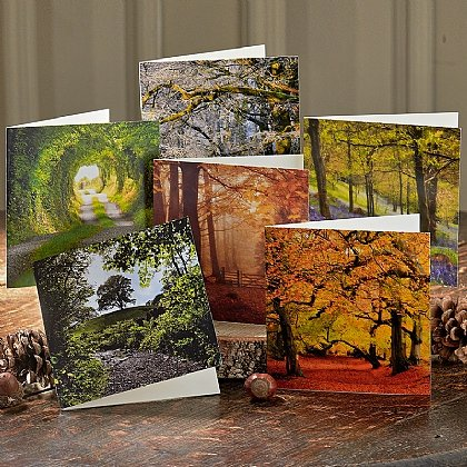 18 Seasonal Woodland View Cards