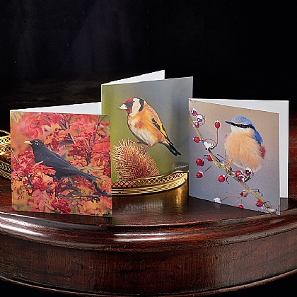 3 Autumn Birdsong Sound-chip Cards