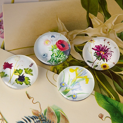 Floral Collection Magnets