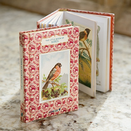The Little Book of Birds