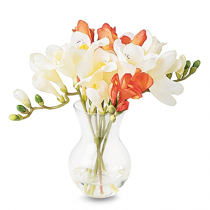 Summer Freesia Arrangement