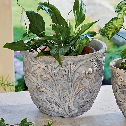 Large Edwardian Planter