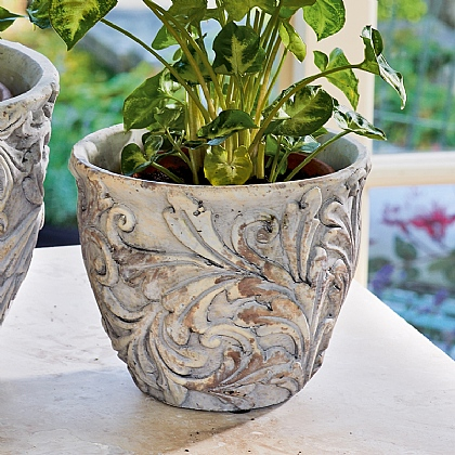 Medium Edwardian Planter