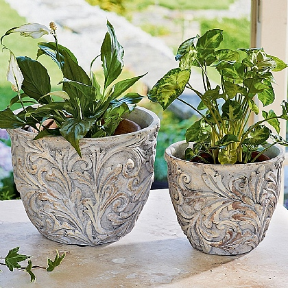 Set of 2 Edwardian Planters